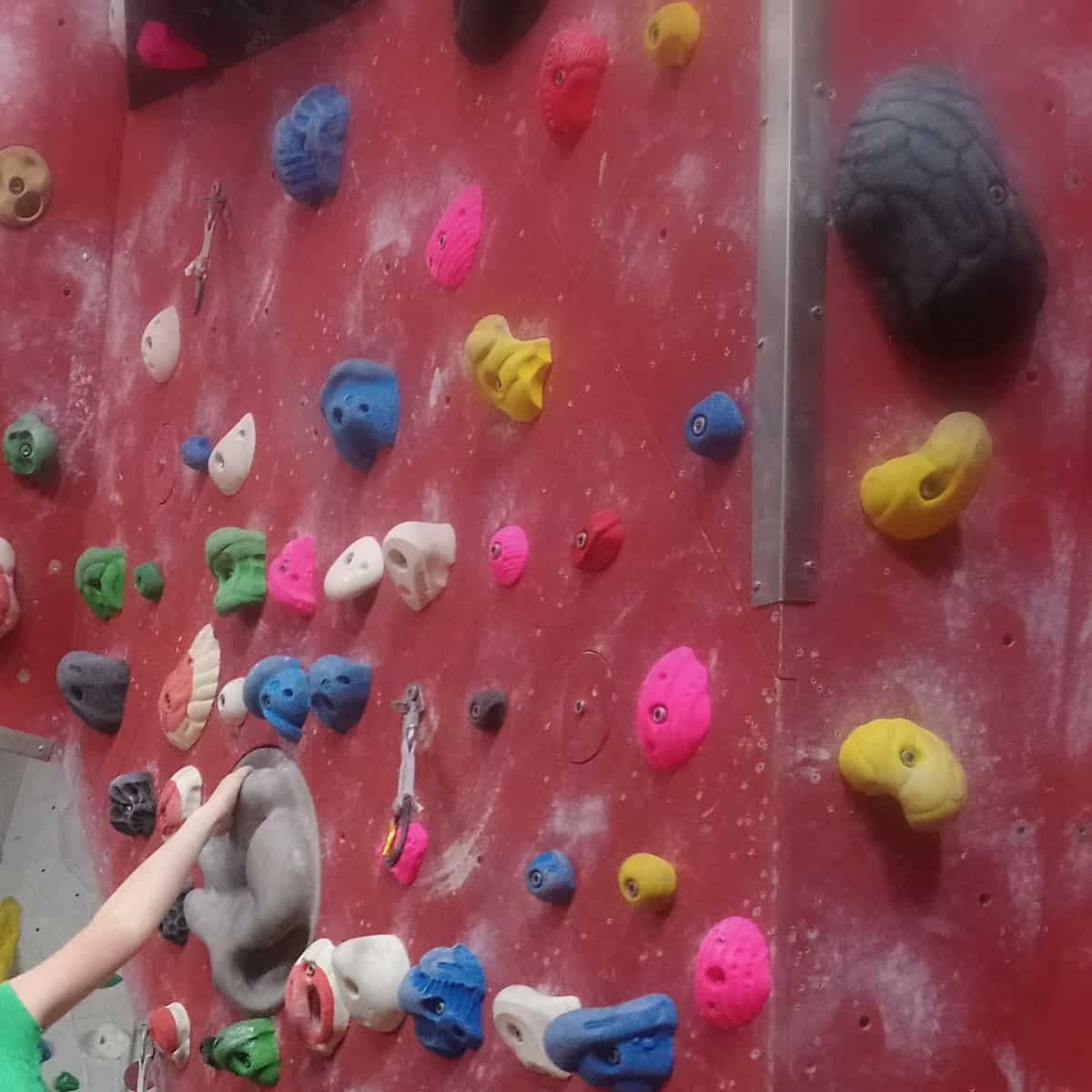 Geckos klettern